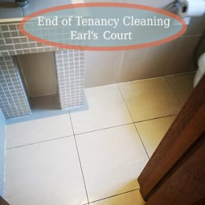 deep cleaning earls court